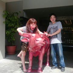 社員旅行 グアム 牛と、、